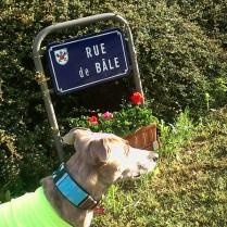Start in der Rue de Bâle