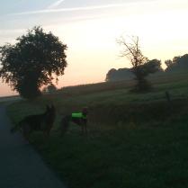 Evita mit Filou beim Sonnenaufgang
