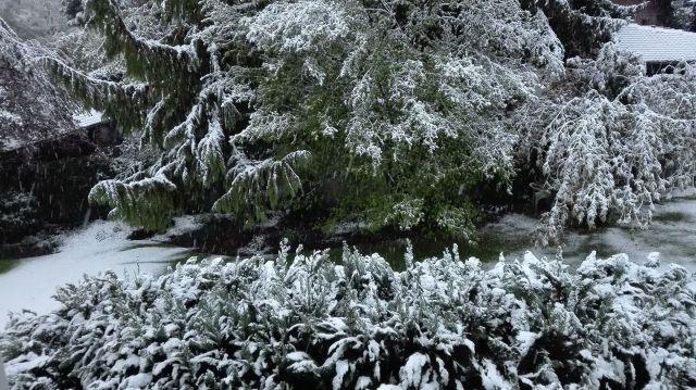 20170426-Winter-Kapriolen