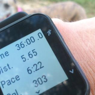 20170630-Running-Time2