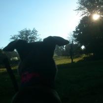 ... da oben blinzelt die Sonne!