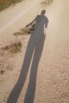 Die Morgensonne produziert eeewig laaange Schatten!