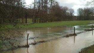 20180119-Running-Hochwasser_031