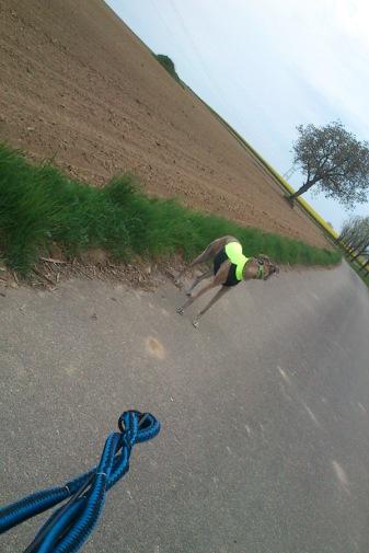 20180428-Bike-Bike011