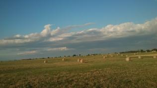 20180626-Evita_Running-landscape