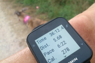 20180808-Running-time