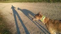 Laaange Schatten 😜