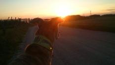 Man sieht die Sonne noch hinter den Hügeln.