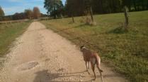 Running auf unserem Lieblings-Trail