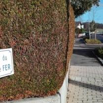 """Hier ist nur noch das Straßenschild Zeuge: """"Rue du Chemin de Fer"""", was so viel heißt wie """"Straße des Eisenweges"""", also Eisenbahnstraße 😉"""
