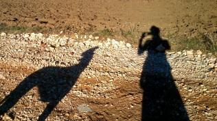 .... es beeindruckend lange Schatten gibt!