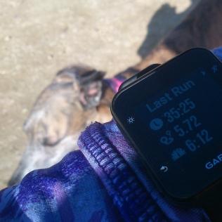 20190221-Running-time2