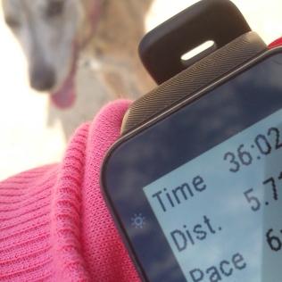 20190228-Running-time1