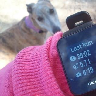 20190228-Running-time2