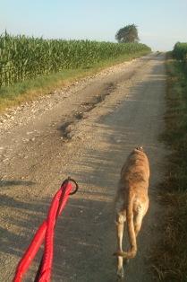 Wir beiden auf unserem BikeTrail!